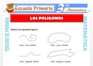 Ficha de Los Polígonos para Tercero de Primaria