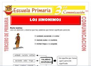 Ficha de Los Sinónimos para Tercero de Primaria