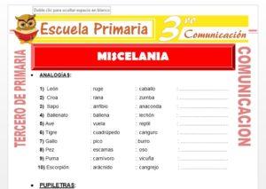 Ficha de Micelania 1 para Tercero de Primaria
