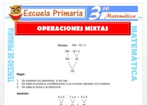 Ficha de Operaciones Mixtas para Tercero de Primaria
