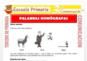 Ficha de Palabras Homógrafas para Tercero de Primaria