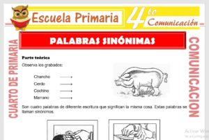 Ficha de Palabras Sinónimas para Cuarto de Primaria