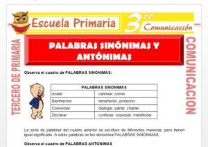 Ficha de Palabras Sinónimas y Antónimas para Tercero de Primaria
