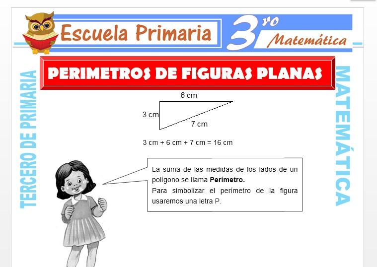 Ficha de Perímetros de Figuras Planas para Tercero de Primaria