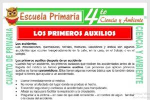 Ficha de Primeros Auxilios para Cuarto de Primaria