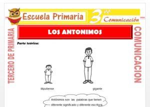 Ficha de Que son los Antónimos para Tercero de Primaria
