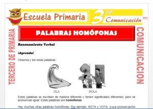 Ficha de Que son Palabras Homofonas para Tercero de Primaria