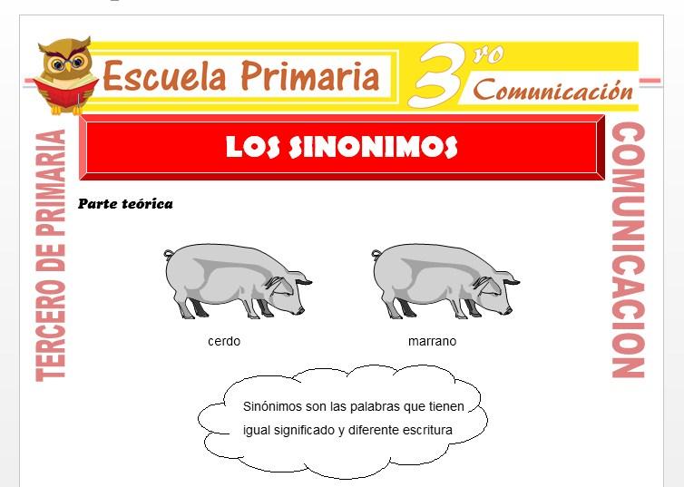 Ficha de Que Son los Sinónimos para Tercero de Primaria