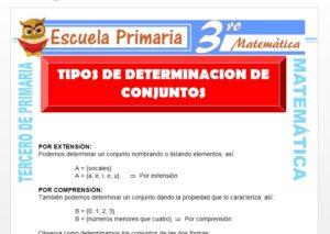 Ficha de Tipos de Determinación de Conjuntos para Tercero de Primaria