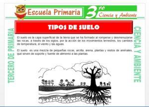 Ficha de Tipos de Suelo para Tercero de Primaria