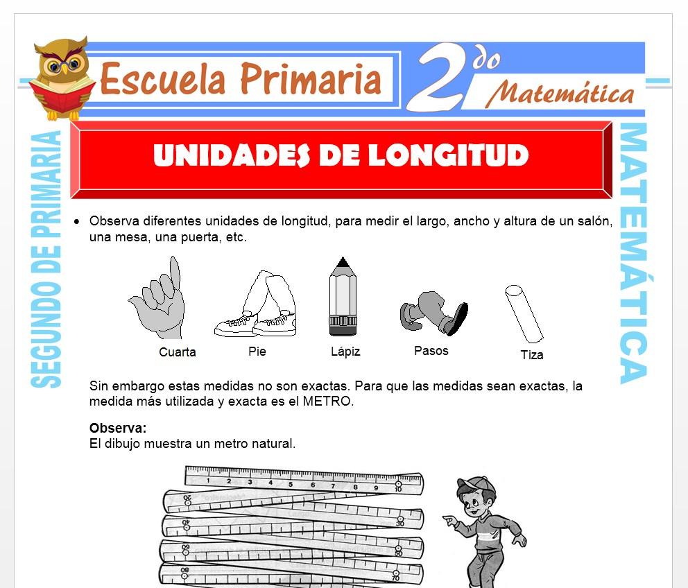Ficha de Unidades de Longitud para Segundo de Primaria