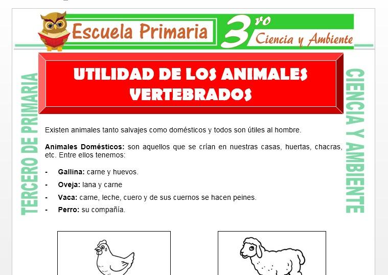 Ficha de Utilidad de los Animales Vertebrados para Tercero de Primaria