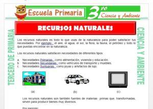 Ficha de Los Recursos Naturales para niños para Tercero de Primaria