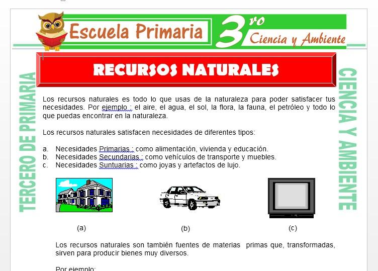 Ficha de Los Recursos Naturales para Tercero de Primaria
