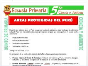 Modelo de la Ficha de Areas Protegidas del Perú para Quinto de Primaria