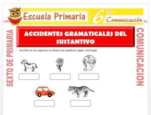 Modelo de la Ficha de Accidentes Gramaticales del Sustantivo para Sexto de Primaria