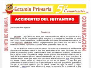 Modelo de la Ficha de Accidentes del Sustantivo para Quinto de Primaria