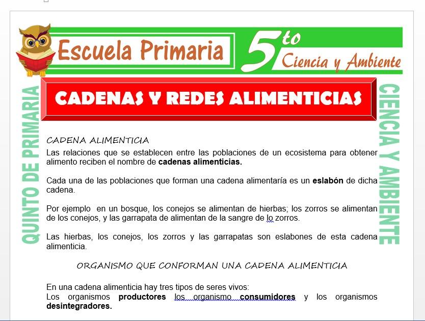 Modelo de la Ficha de Cadenas y Redes Alimenticias para Quinto de Primaria