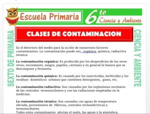 Modelo de la Ficha de Clases de Contaminación para Sexto de Primaria