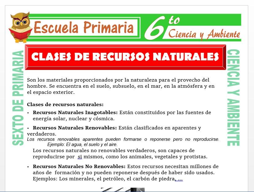 Modelo de la Ficha de Clases de Recursos Naturales para Sexto de Primaria