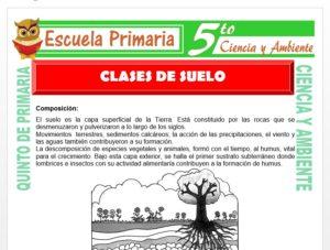 Modelo de la Ficha de Clases de Suelo para Quinto de Primaria