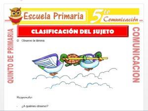 Modelo de la Ficha de Clasificación del Sujeto para Quinto de Primaria