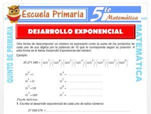 Modelo de la Ficha de Desarrollo Exponencial para Quinto de Primaria