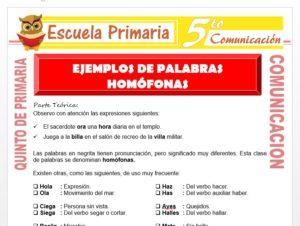 Modelo de la Ficha de Ejemplos de Palabras Homófonas para Quinto de Primaria