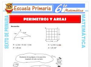 Modelo de la Ficha de Ejercicios de Perímetros y Áreas para Sexto de Primaria