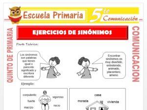Modelo de la Ficha de Ejercicios de Sinonimos para Quinto de Primaria