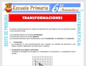 Modelo de la Ficha de Ejercicios de Transformaciones para Sexto de Primaria