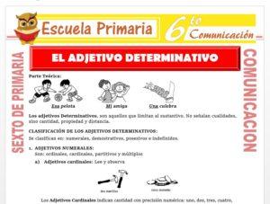 Modelo de la Ficha de El Adjetivo Determinativo para Sexto de Primaria