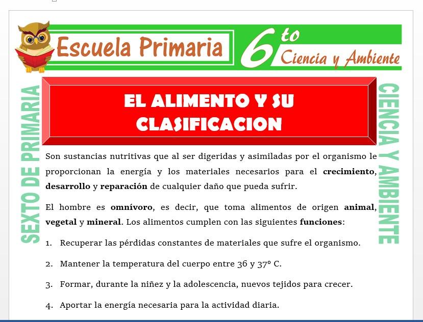 Modelo de la Ficha de El Alimento y su Clasificación para Sexto de Primaria