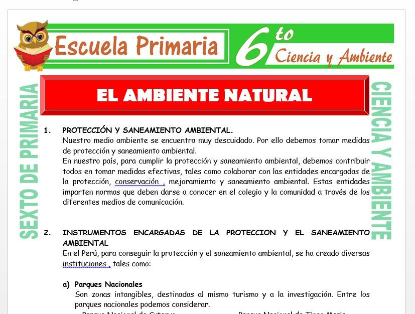 Modelo de la Ficha de El Ambiente Natural para Sexto de Primaria