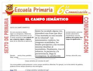 Modelo de la Ficha de El Campo Semantico para Sexto de Primaria
