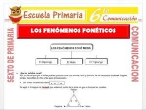 Modelo de la Ficha de El Fenómeno Fonético para Sexto de Primaria