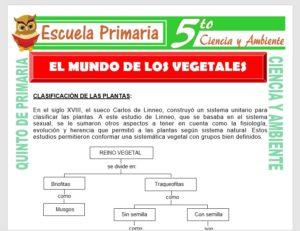 Modelo de la Ficha de El Mundo de los Vegetales para Quinto de Primaria