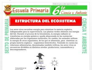 Modelo de la Ficha de Estructura del Ecosistema para Sexto de Primaria