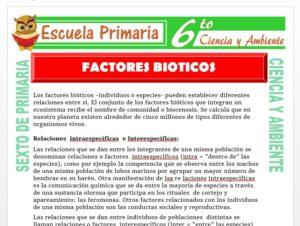 Modelo de la Ficha de Factores Bióticos para Sexto de Primaria