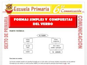 Modelo de la Ficha de Forma Simple y Compuesta del Verbo para Sexto de Primaria