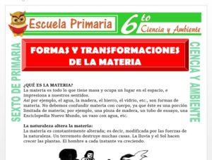 Modelo de la Ficha de Formas y Transformaciones de la Materia para Sexto de Primaria