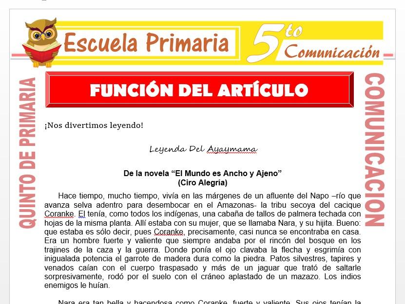 Modelo de la Ficha de Función del Articulo para Quinto de Primaria