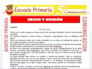 Modelo de la Ficha de Hecho y Opinión para Quinto de Primaria