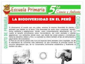 Modelo de la Ficha de La Biodiversidad en el Perú para Quinto de Primaria