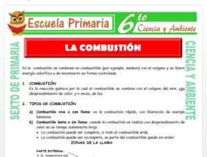 Modelo de la Ficha de La Combustión para Sexto de Primaria