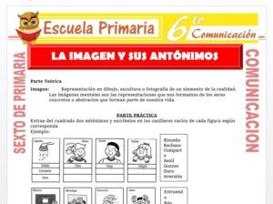 Modelo de la Ficha de La Imagen y sus Antónimos para Sexto de Primaria