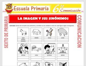 Modelo de la Ficha de La Imagen y sus Sinónimos para Sexto de Primaria