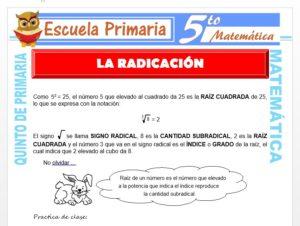 Modelo de la Ficha de La Radicación para Quinto de Primaria