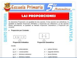 Modelo de la Ficha de Las Proporciones para Quinto de Primaria