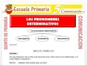 Modelo de la Ficha de Los Pronombres Determinativos para Quinto de Primaria